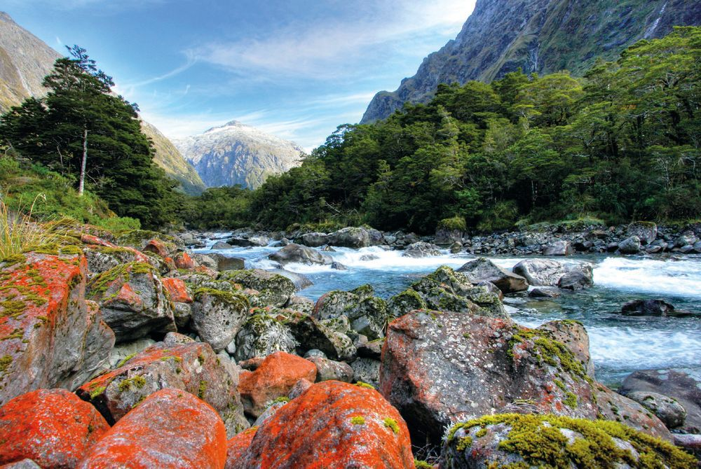 Hollyford Track, South Island, New Zealand