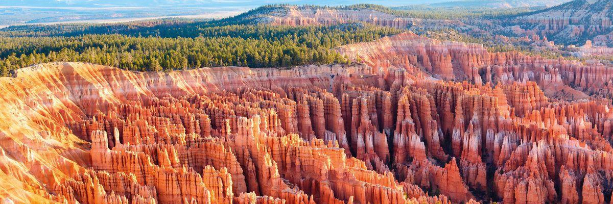 Hoodoos, Bryce Canyon National Park, Utah, USA