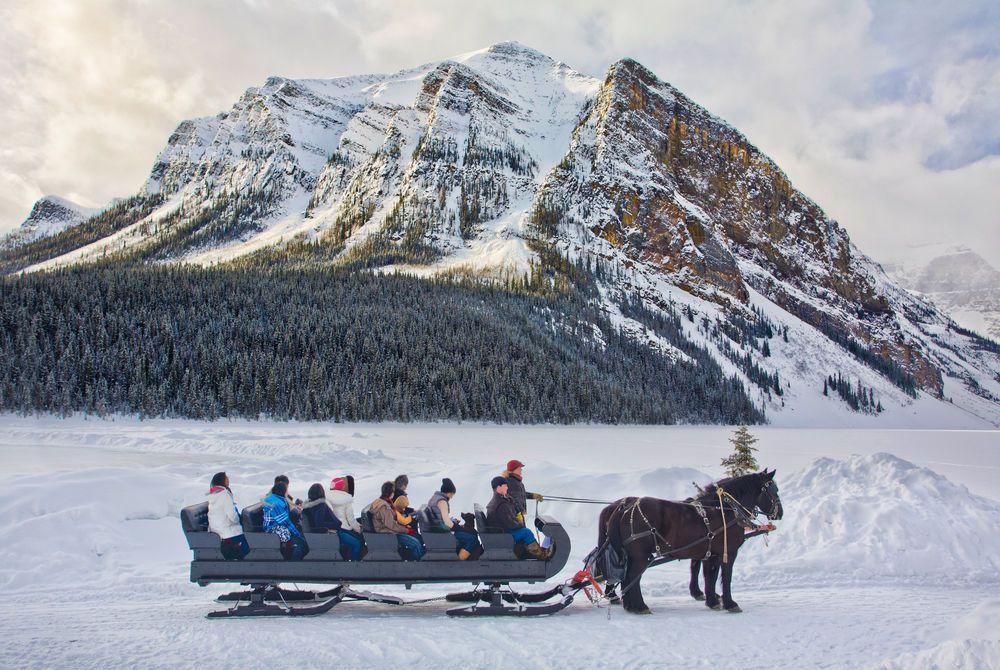 Horse Drawn Sleigh - Lake Louise (Banff Lake Louise Tourism)
