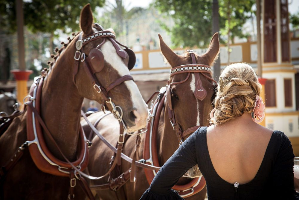 Horse handler at the Equestrian Fair of Jerez