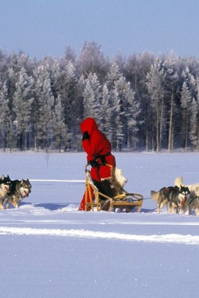 Hotel Kalevala husky sled tour