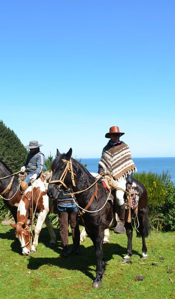 Horse riding with Hotel Vira Vira in Pucon, Chile Lake District