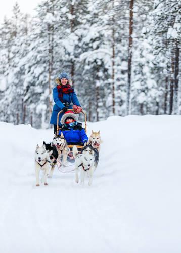 Husky sledding in Finnish Lapland