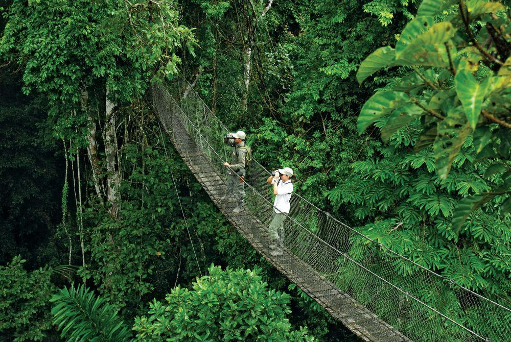 Jungle trekking at the Inkaterra Reserva Amazonica
