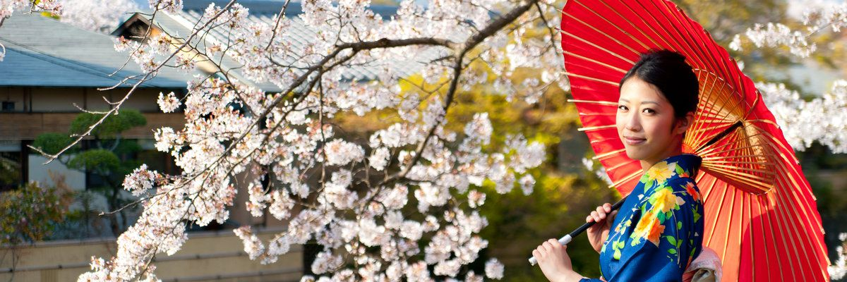 Japanese Kimono Woman and Cherry Blossom, Japan