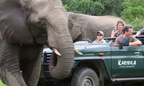 Kariega Game Reserve, Eastern Cape