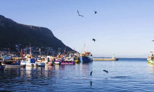 Kalk Bay, Cape Town