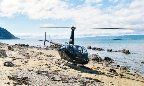 Kapiti Coast Experience