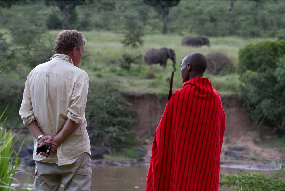 Elephant viewing with Masai local