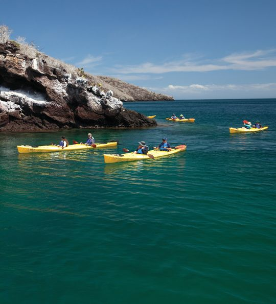 Kayak excursion, Silver Galapagos