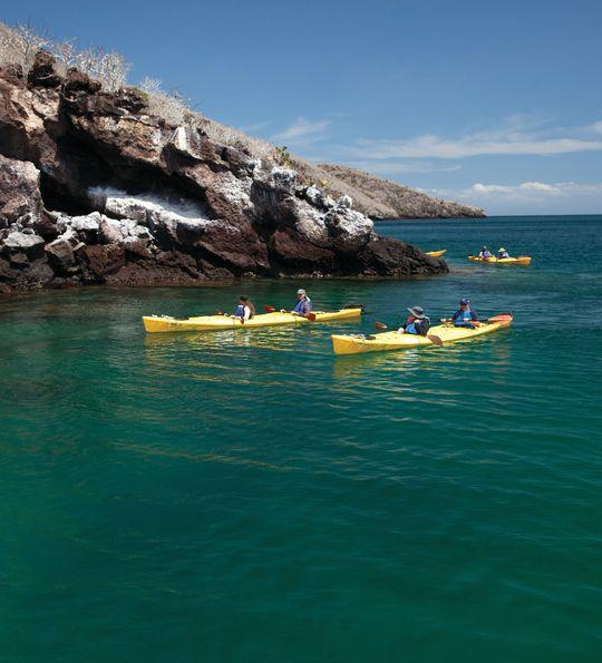 Kayak excursion, Silver Galapagos