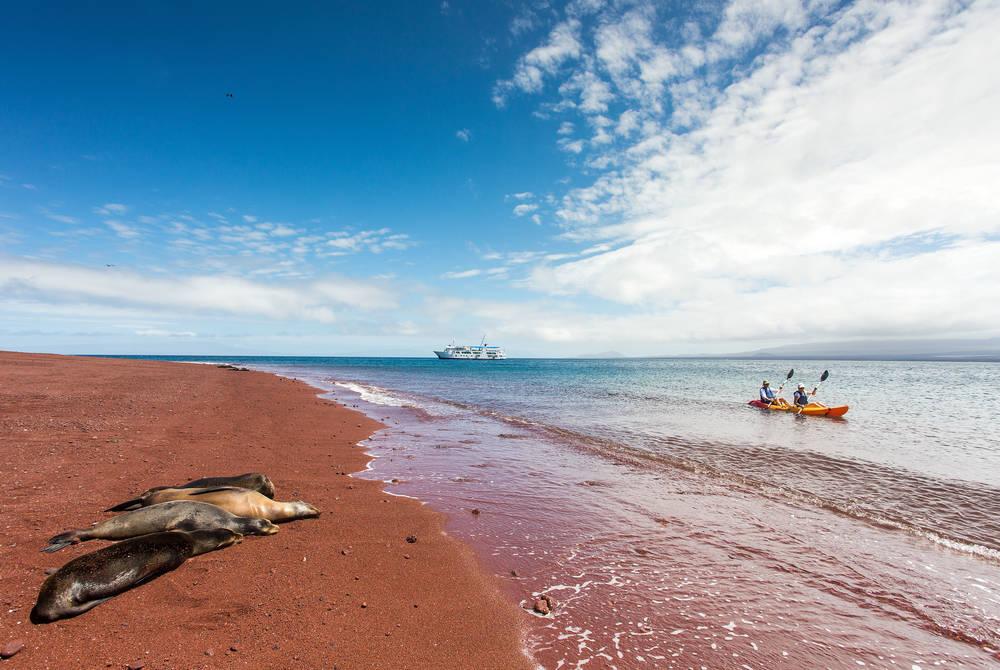 Kayaking, Isabela II Yacht, Galapagos