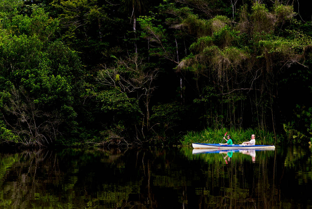 Kayaking in the Amazon, La Selva