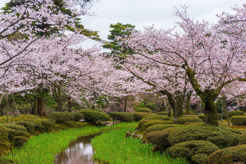 Kenroku-En Gardens, Kanazawa