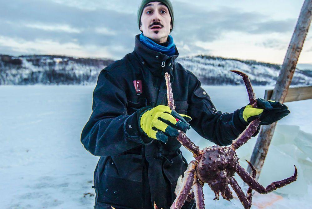 King Crab Fishing, Kirkenes Snowhotel