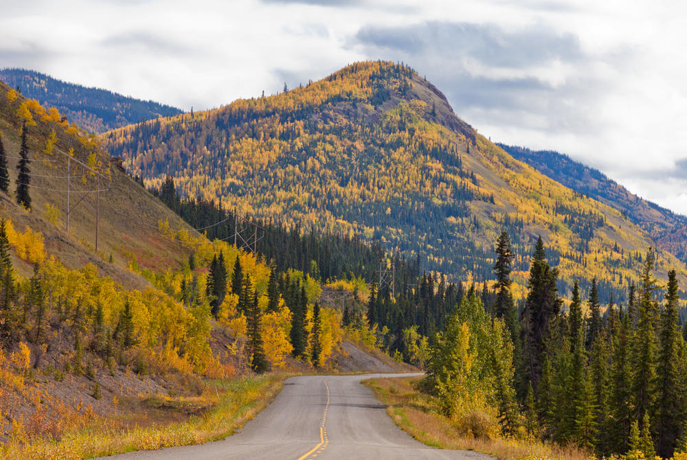Autumn on Klocike Highway, Yukon