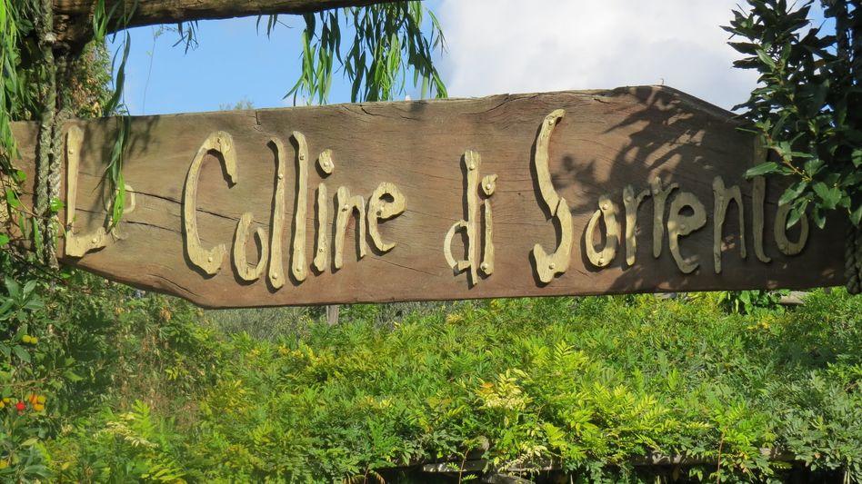 La Colline di Sorrento Olive Farm