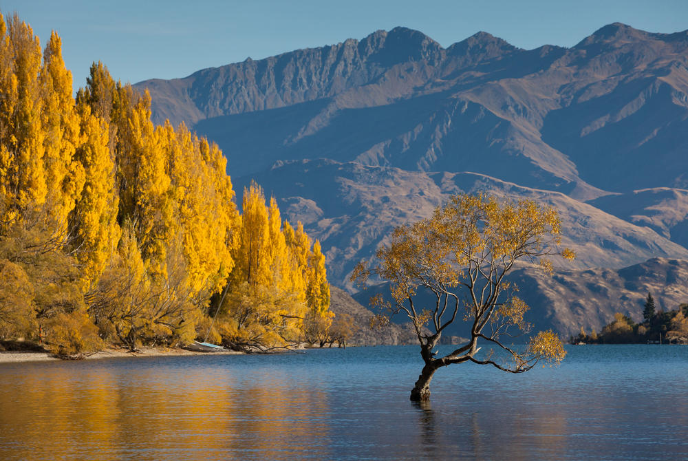 Lake Wanaka on South Island, New Zealand