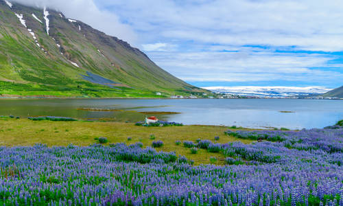 Isafjordur town, in the west fjords region, Iceland