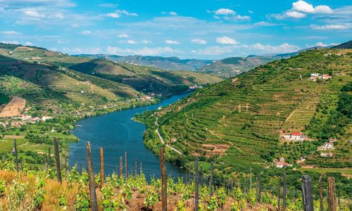 Landscape of the Douro river region