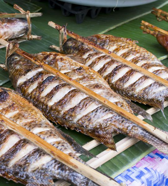 Grilled fish, Laos