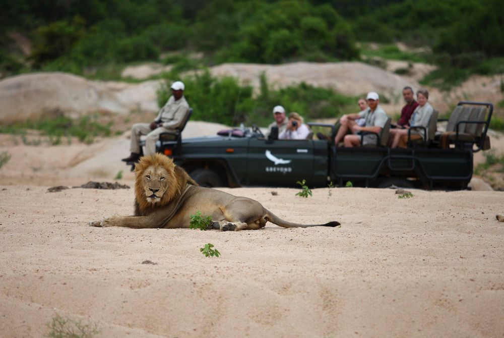 Sabi Sands Game Reserve, South Africa
