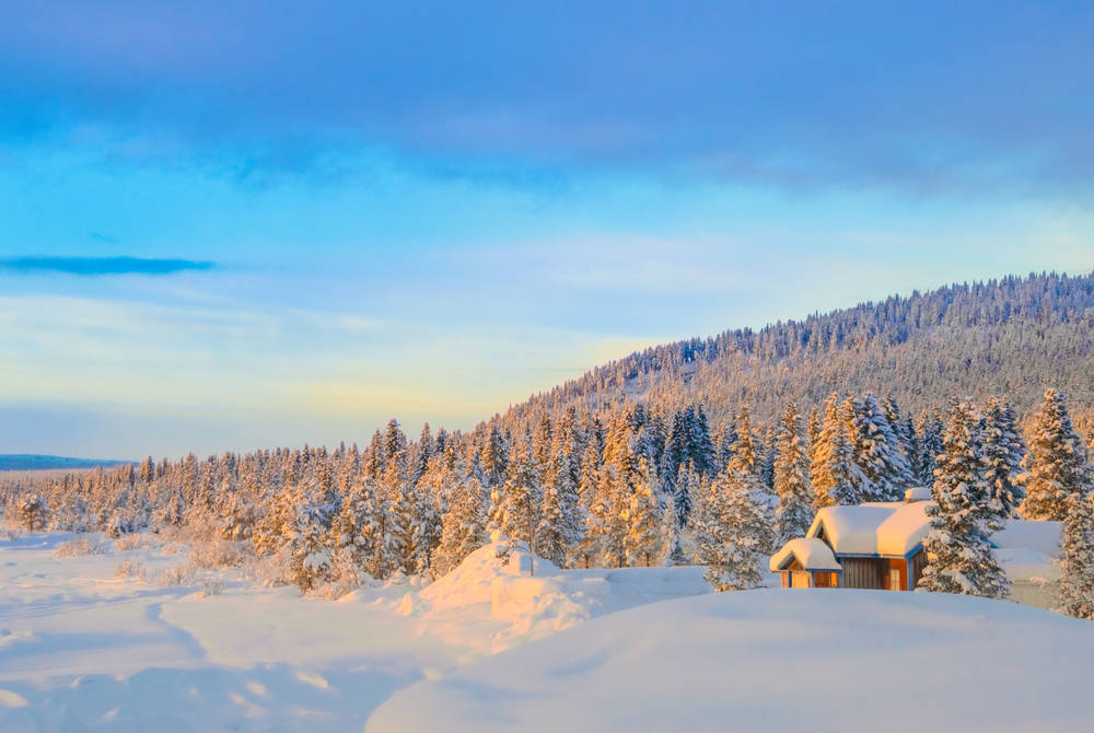Lapland wilderness near Bjorkliden