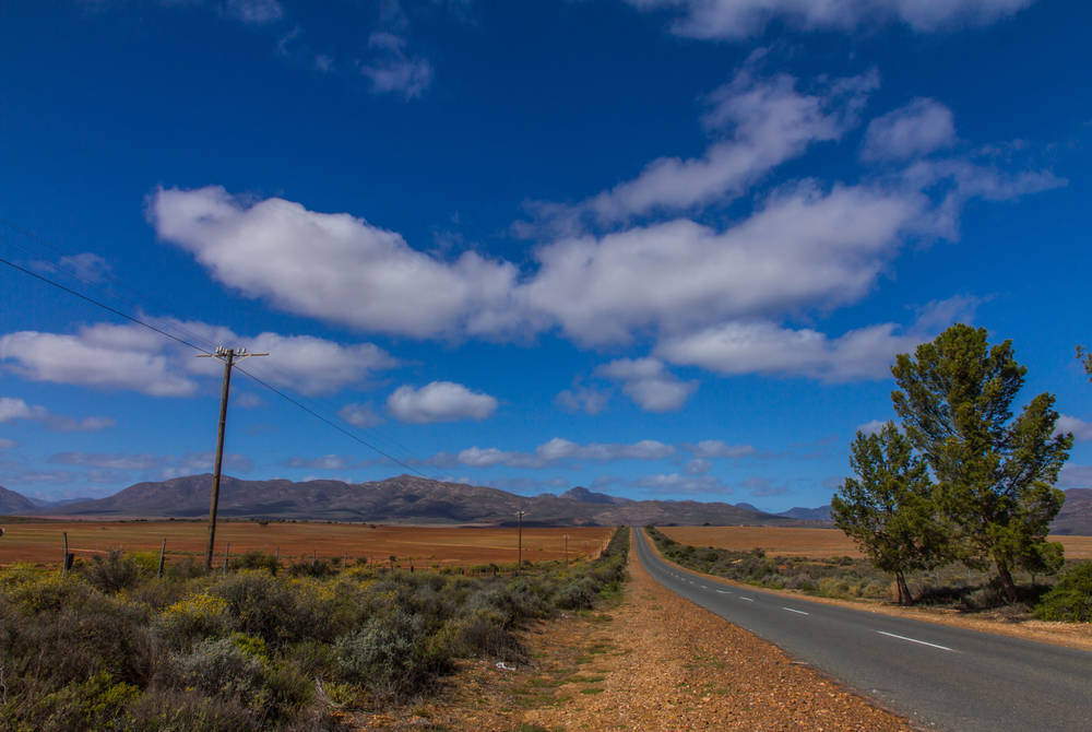 The Little Karoo
