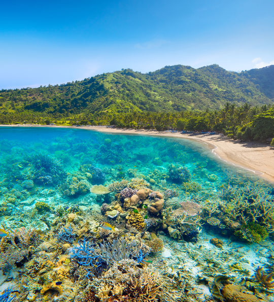 A typical beach and accompanying coral reef in Lombok, Indonesia