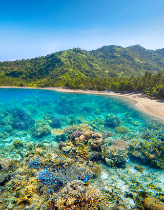 Lombok beach and coral reef, Indonesia