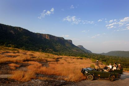 Game Drive, Mahua Kothi Jungle Lodge