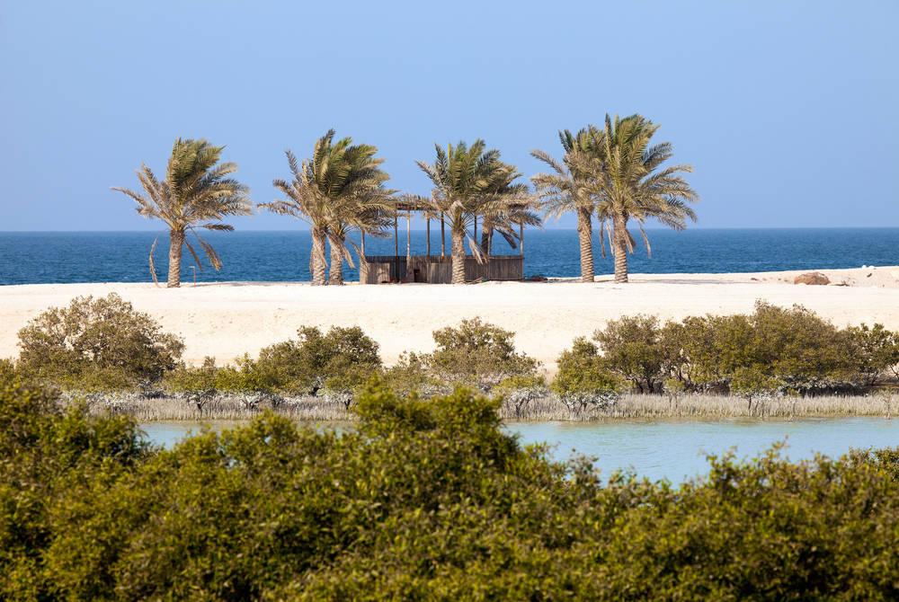 Sir Bani Yas island, UAE