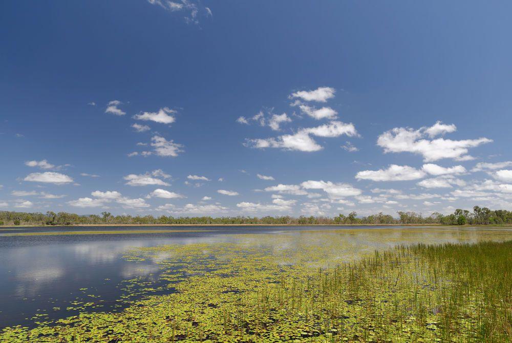 Mareeba Wetlands, Atherton Tablelands, Queensland