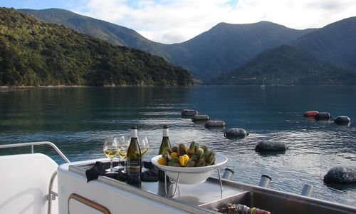 Marlborough Sounds Gourmet Seafood Cruise