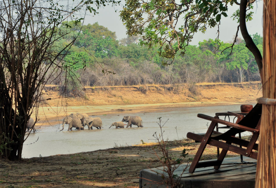Mchenja Bush Camp in South Luangwa National Park