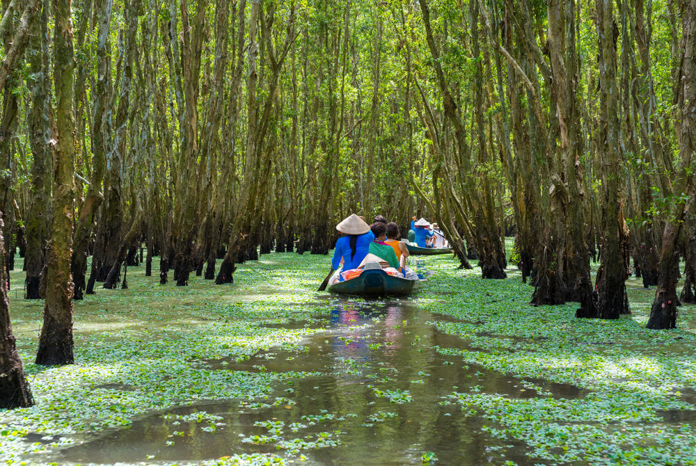 Boat trip down the Mekong Delta