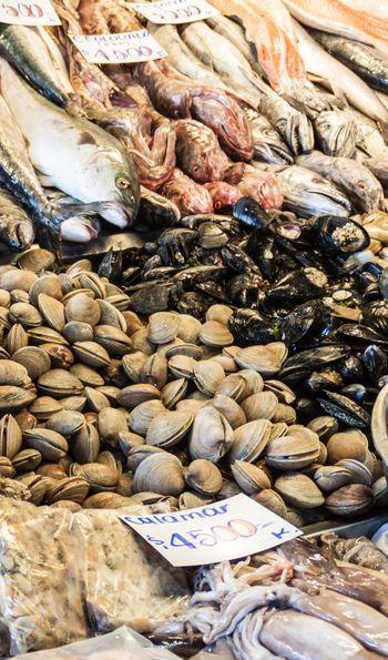 Fish at Mercado Central Market in Santiago, Chile
