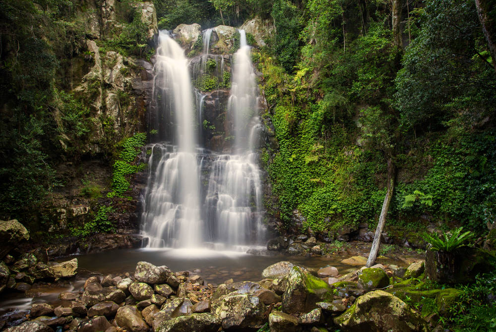 Minnamurra Falls, New South Wales