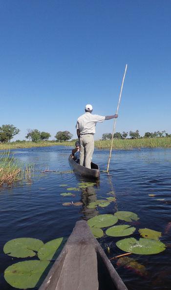 """Mokoro dugout """"makoro"""" canoe, Botswana"""