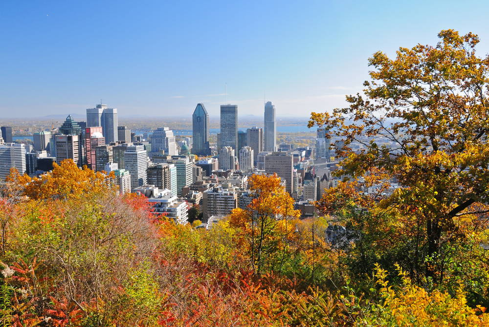 Montréal in the fall