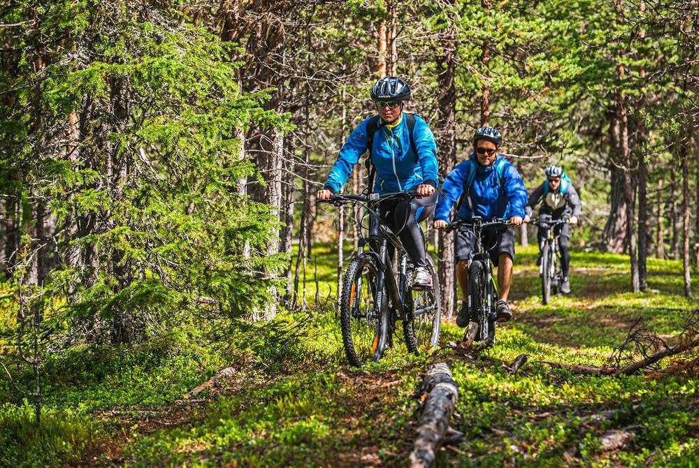 Mountain biking, ICEHOTEL 365 (© Markus Alatalo)