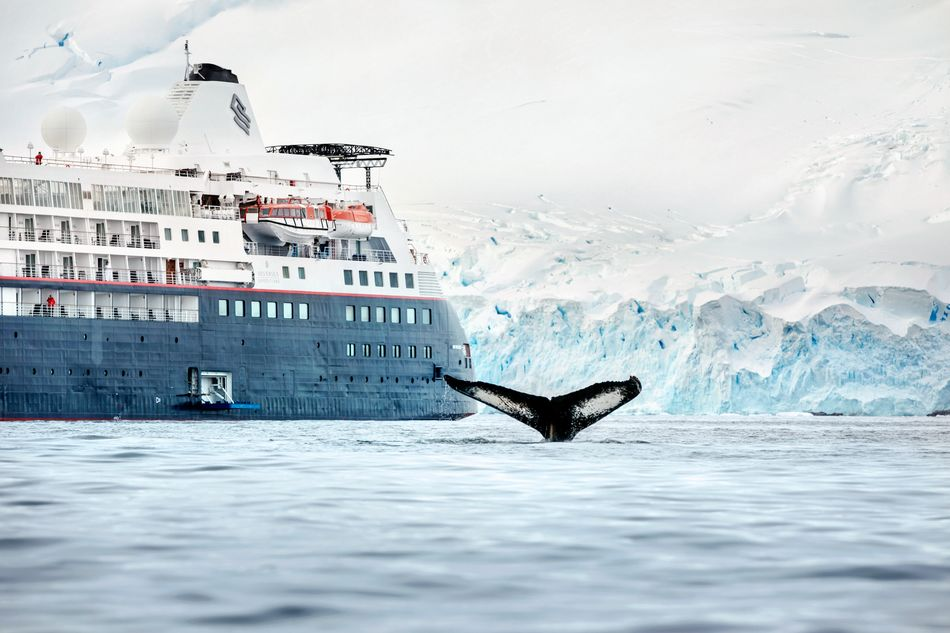 Watching whales from the Silver Cloud – a photo edited in the onboard studio