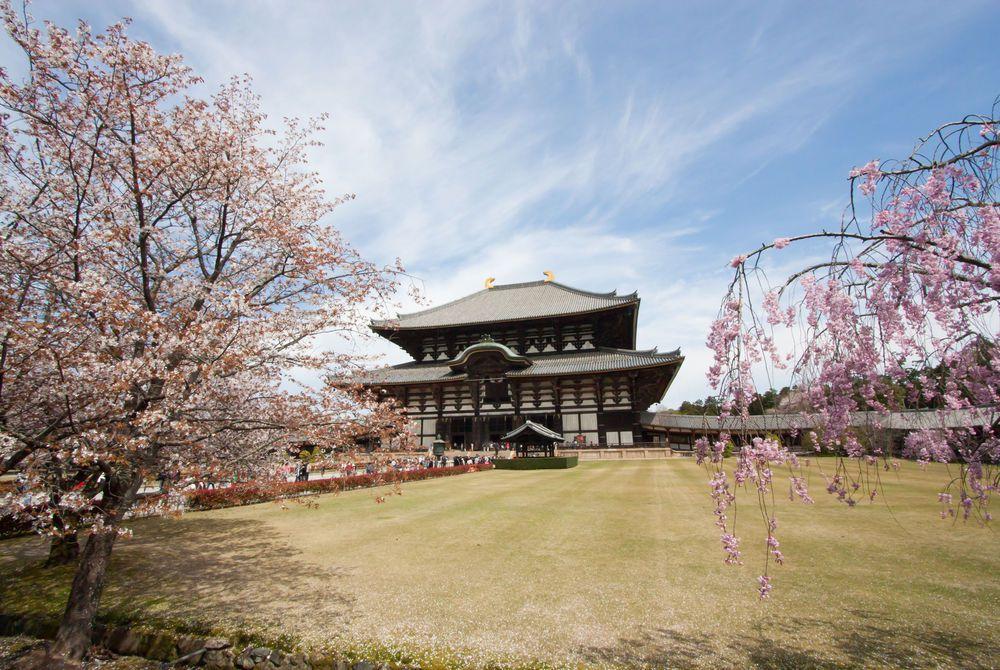 Nara, Honshu, Japan