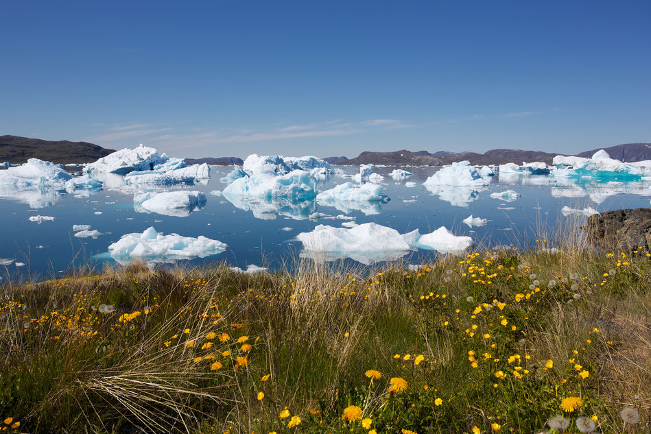 Icebergs in Narsaq, southern Greenland