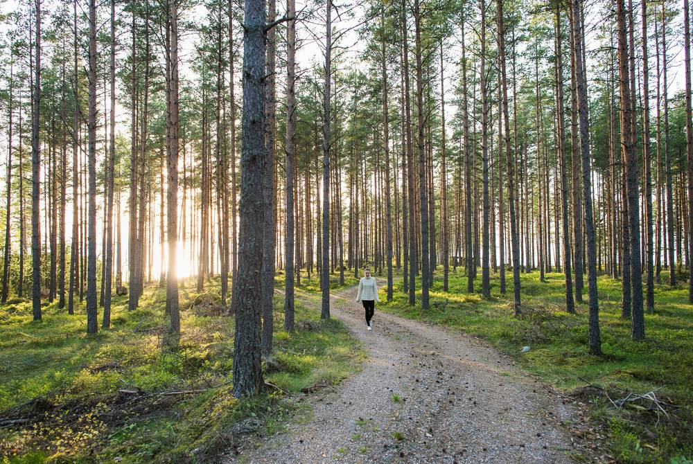 Nature trails, Porvoo