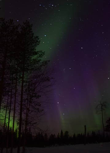 Norire Arakelyan's Northern Lights photography in Rovaniemi, Finland