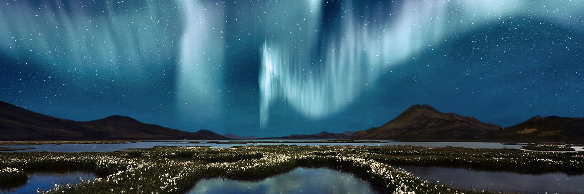 Northern Lights Hunting By Bus Holidays 2020 2021 Best