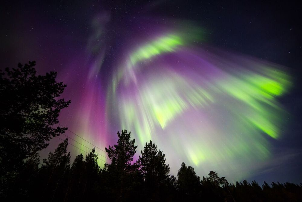 Northern Lights, Nellim Wilderness Hotel, Lapland, Finland