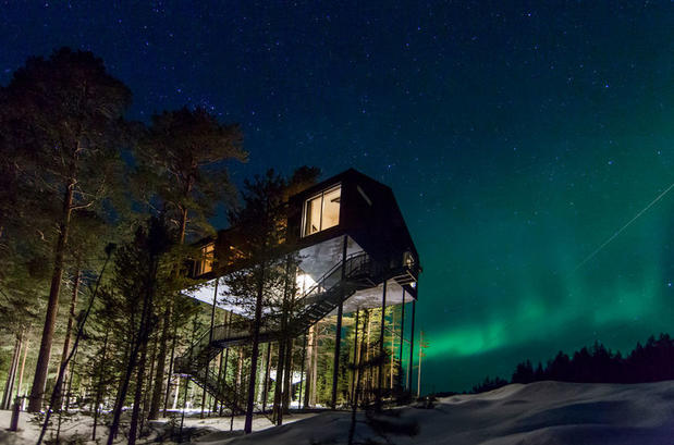 Treehotel and Northern Lights in winter in the forest of Harads, Swedish Lapland