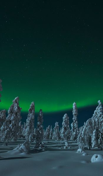 Northern Lights at Rovaniemi, Finnish Lapland (Credit: Visit Rovaniemi)